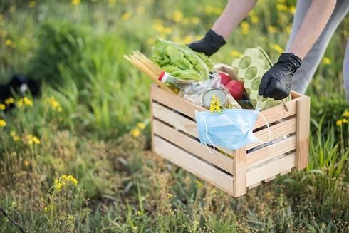 rolnik-na-kwarantannie-obrazek-kosz-warzyw